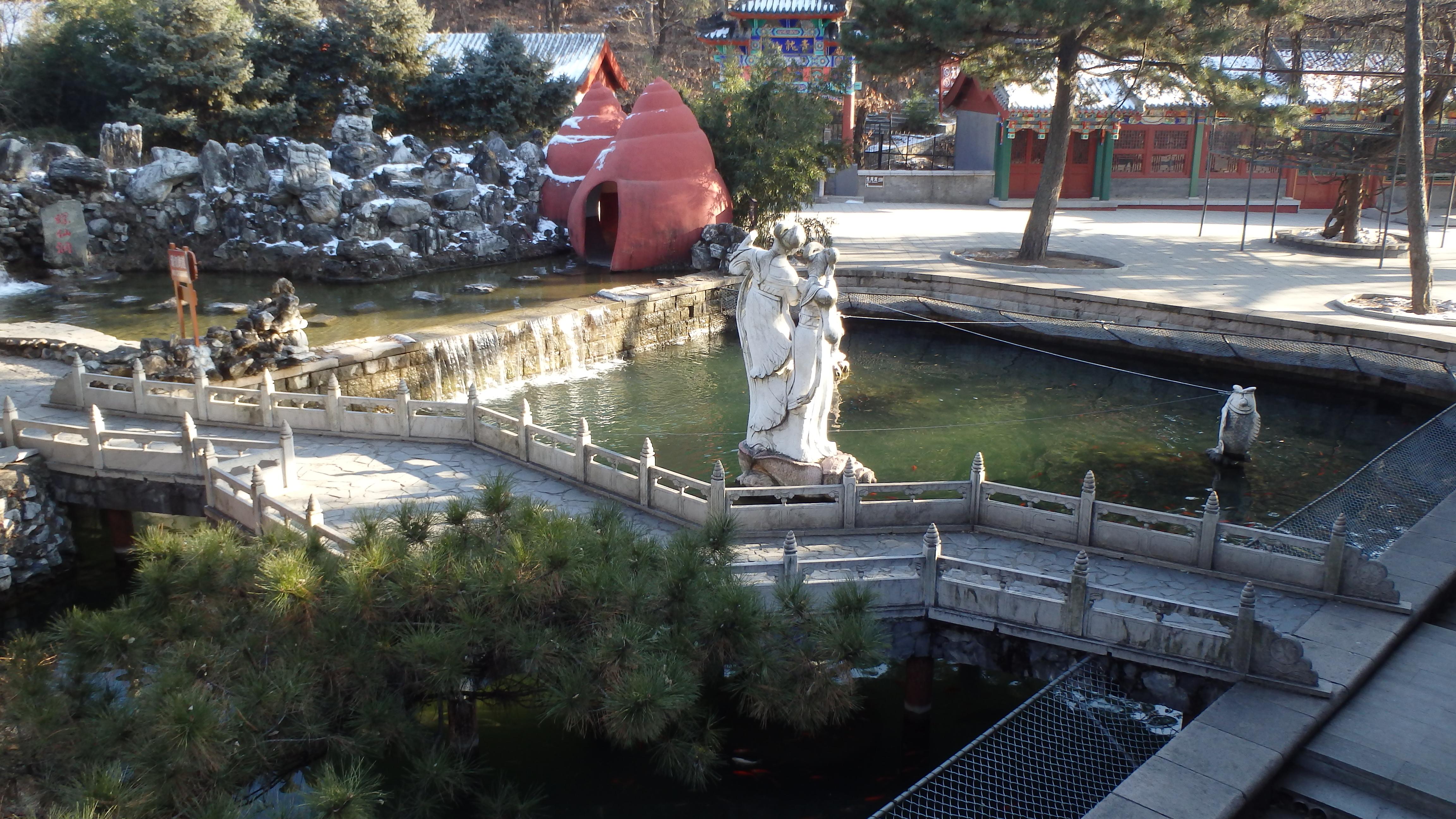 Красные улитки на территории храма Хунло-сы